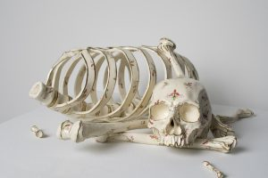Sculpted and patterned skull, ribcage, and bones arranged in front of a white background.