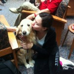 Therapy Dogs Tuesday 10 March