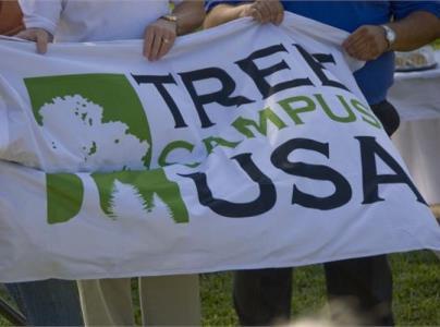 TreeCampus