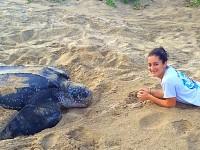 Jennifer Gooch and leatherback turtle