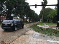 Woodland Boulevard after Hurricane Matthew